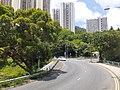 HK 城巴 619 CityBus 遊車河 tour view 觀塘區 Kwun Tong District 藍田 Lam Tin 鯉魚門道 Lei Yue Mun Road June 2020 SS2 07.jpg