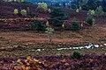 Hale in autumn - panoramio (1).jpg