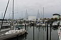 Hampton Marinas - panoramio (4).jpg