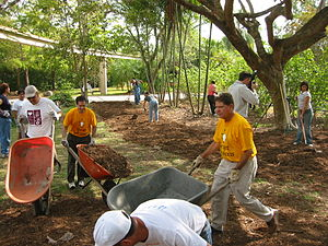 English: Hands On Miami volunteers help out at...