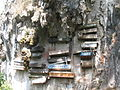 Hanging Coffins of Sagada, Mountain Province.JPG