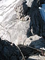 Heilbronner Weg Steinschartenkopf Ladder upstairs.JPG