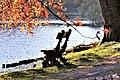 Herbst im Park - Blätter, Bäume, Seeufer und Wege im Wandel der Jahreszeiten. (17).jpg