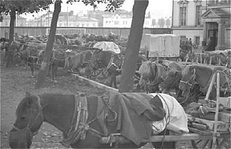 Mobilization - Horses and carriages requisitioned in the mobilization before the Winter War