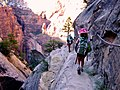 Hidden Canyon trail zion national park.jpg