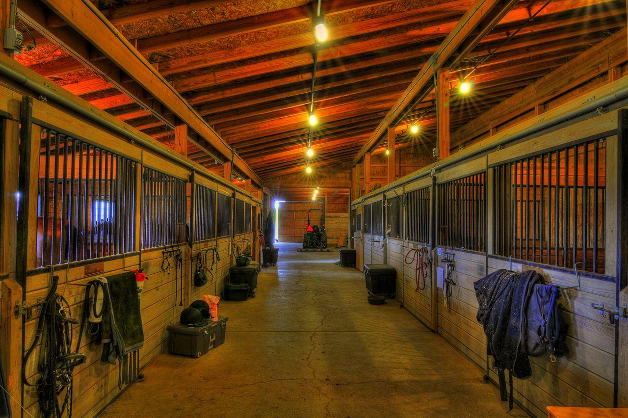 FileHighmark Farm Inside the barn 4590218495jpg