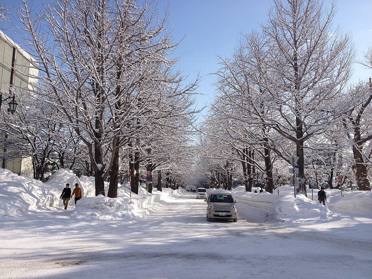 Hokkaido University in Winter