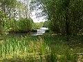 Holmsley Gravel Pit, lake - geograph.org.uk - 1298312.jpg