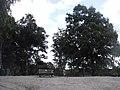 Holterberg - 2009 - panoramio (2).jpg
