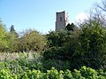 Holy Trinity Church, Blythburgh - geograph.org.uk - 775989.jpg