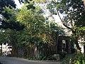 Hong Kong Zoological and Botanical Gardens 19.jpg