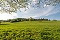 Horn-Bad Meinberg - 2015-05-04 - LIP-004 Naptetal (52).jpg