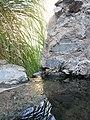 Hot water stream - panoramio.jpg