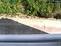 Hotel Neptun Back - panoramio - John Duncan (2).jpg
