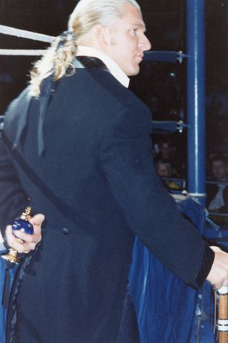 Triple H - Helmsley wore a tailcoat suit and carried a traditional spray bottle to highlight his effete snobbishness