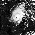Hurricane Fico (1978).JPG