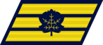 IDF-Enlisted-Navy-4.png