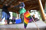 Iceman Pride end LGBT month with community picnic 150627-F-VD309-012.jpg