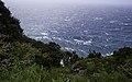 Ilha das Flores P5260085 (35877056711).jpg