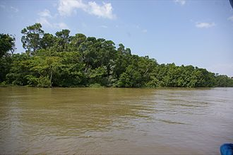 Marajó Archipelago Environmental Protection Area - Image: Ilha de Marajó
