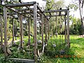 Imperial Botanical Garden 1713 - panoramio (14).jpg