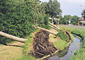 In Spijkenisse many years ago a storm.jpg