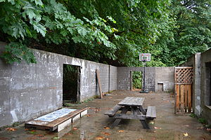 Variations of basketball - Half-court in Triangle Lake, Oregon