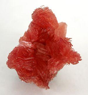 Inesite-k272a.jpg