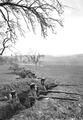 Infanterie während Manöver - CH-BAR - 3237877.tif