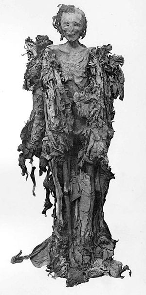 Ahmose Inhapy - mummy of Ahmose-inhapi