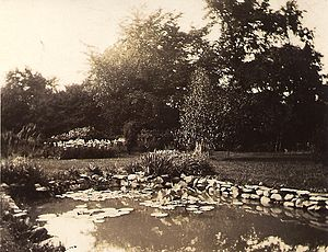 Interpines sanitarium - The garden lily pond with a bed of Iris behind, June 1930. Photo by Edna Kelly.