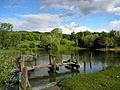 Irchelpark 2012-05-16 18-31-18 (P7000).JPG