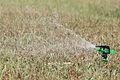 Irrigational sprinkler.jpg