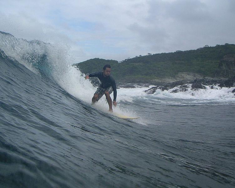 File:Ishigaki-jima surfer.jpg