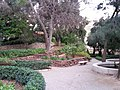 Jardín de Monforte 77.jpg
