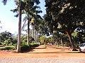 Jardim das Aroeiras, Goiânia - GO, Brazil - panoramio (5).jpg