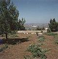 Jeruzalem Hadassah universitair medisch centrum gezien vanaf een heuvel, Bestanddeelnr 255-9210.jpg