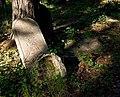 Jewish cemetery Otwock 210761800.jpg