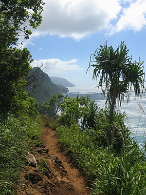 Kalalau Trail leading to the beach