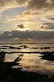 Kapoho Tide Pools, Waiopae, Pahoa (504368) (23035927824).jpg