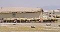 Karapınar Yaylası 10 05 89 Schafe Melken.jpg