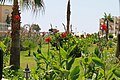 Kargıcak Belediyesi, Kargıcak-Alanya-Antalya, Turkey - panoramio (2).jpg