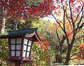 Katsunumacho Katsunuma, Koshu, Yamanashi Prefecture 409-1316, Japan - panoramio (1).jpg