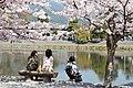 Katsura river bank, Arashiyama, Kyoto (3667159764).jpg
