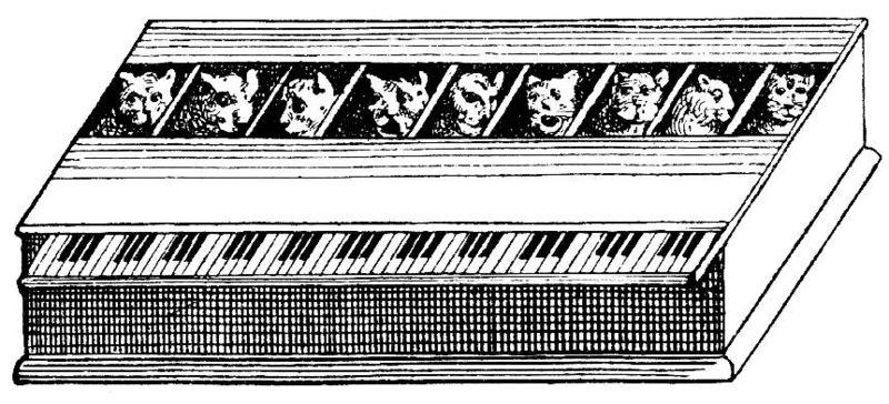 800px-Katzenkavalier.jpg