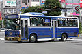KawanakajimaBus Binzuru1.JPG