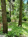 Kharkiv natural sanctuary Institute 11.JPG