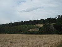 Kiesgrube Maßendorf.jpg