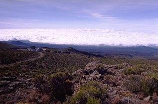 Kilimanjaro HoromboHut.jpg