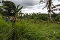 Kimanis Sabah Colony-Ellena-09.jpg